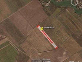 Teren agricol de vânzare, în Pantelimon, zona Exterior Nord