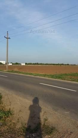 Vanzare teren Bragadiru- Centura- adiacent. - imaginea 1