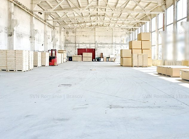 Depozitare Productie Service auto Logist: HALA-DEPOZITARE-PRODUCTIE-LOGISTIC
