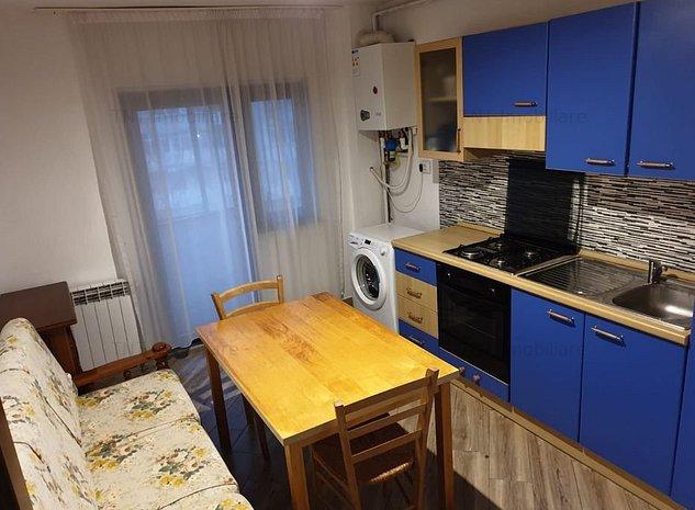 Apartament 1 camera decomandat zona Nicolina-Frumoasa - imaginea 1