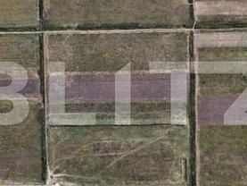 Teren agricol de vânzare, în Timişoara, zona Aeroport