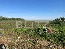 Teren agricol de vânzare, în Timişoara