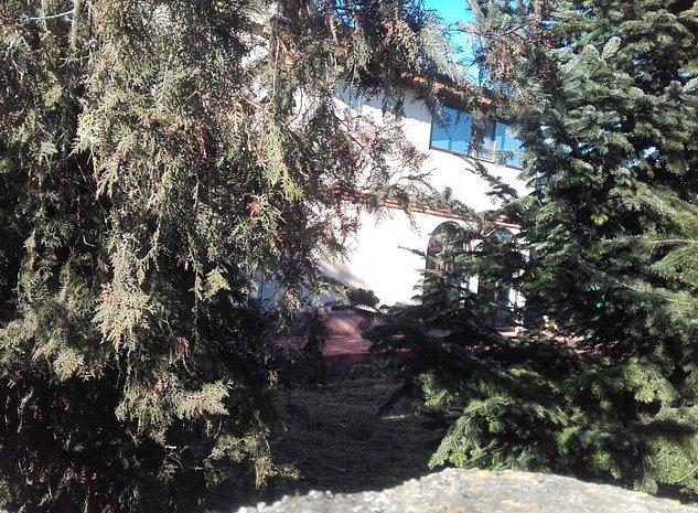 Vanzare casa Sinesti Ialomita  - imaginea 1