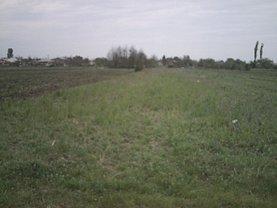 Licitaţie teren agricol, în Bolintin-Deal