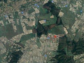 Licitaţie teren agricol, în Olcea