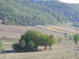 Licitaţie teren agricol, în Cotus
