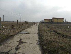 Licitaţie teren agricol, în Bragadiru, zona Haliu