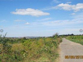 Licitaţie teren agricol, în Barnova