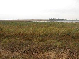 Licitaţie teren agricol, în 23 August