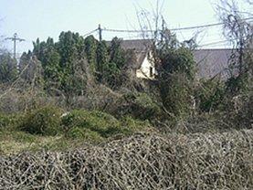 Licitaţie teren agricol, în Zavoi