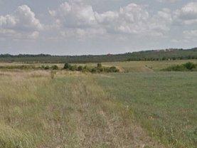 Licitaţie teren  agricol, în Paleu