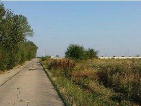 Licitaţie teren agricol, în Tancabesti
