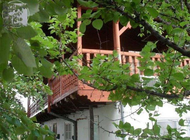 Casa de Vacanta Izvorani - imaginea 1