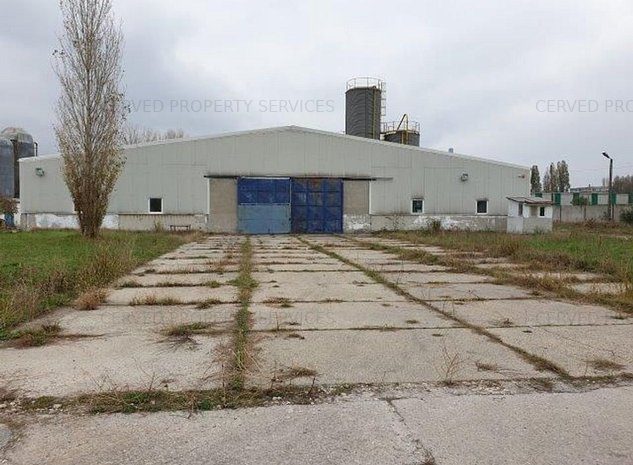 Spatiu industrial Palas Constanta - imaginea 1