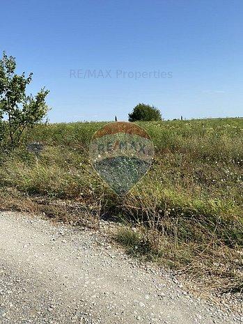 Teren 664 mp Otopeni / Strada Constantin Brancoveanu - imaginea 1