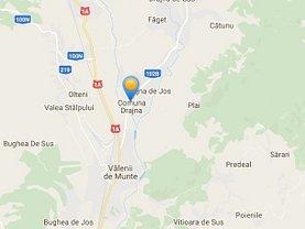Licitaţie teren pasune, în Drajna
