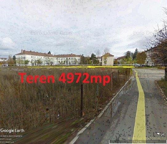 81203_poza_google.jpg