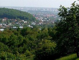 Teren constructii de vânzare, în Valea Mare-Podgoria