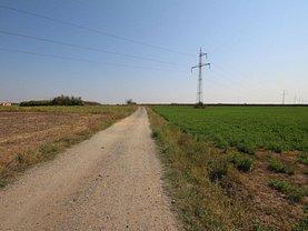 Teren agricol de vânzare, în Sacalaz