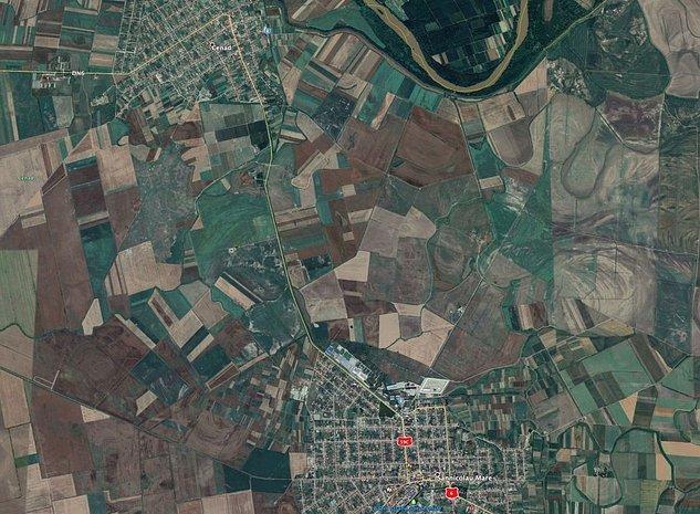 Teren agricol 1015 ha Cenad - imaginea 1