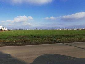 Teren agricol de vânzare, în Dumbrăviţa, zona Est