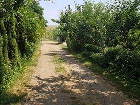 Teren agricol de vânzare, în Negru Voda