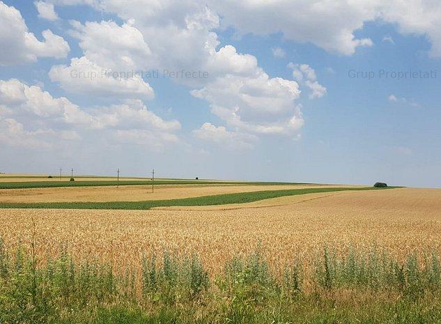 Ferma agrucola 130 ha - imaginea 1