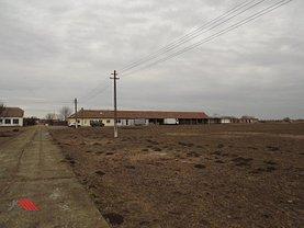 Teren agricol de vânzare în Timisoara, Periferie