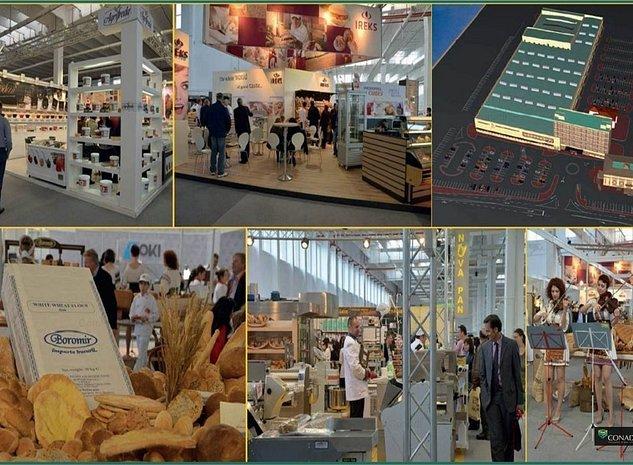 Spatiu Expozitional, Hala, Depozit, Birouri - Pantelimon / Biruintei - imaginea 1