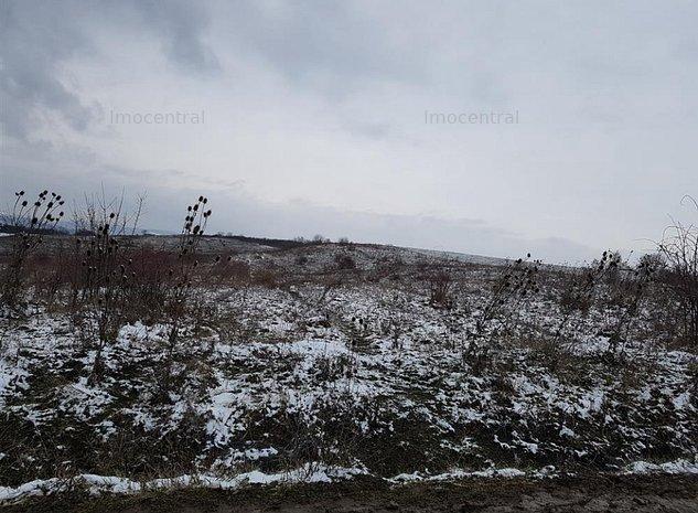 Teren pentru case in Borhanci, Cluj Napoca 3600mp - imaginea 1