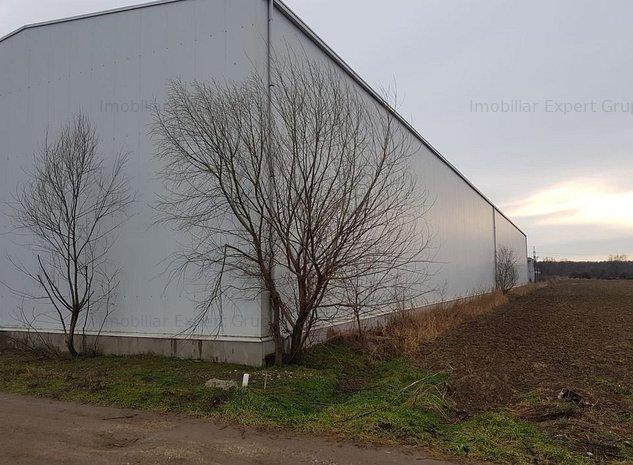 Hala industriala noua Jilava - imaginea 1