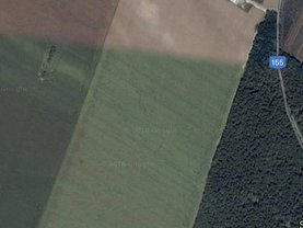 Teren agricol de vânzare, în Paulesti