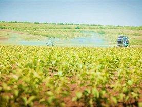 Teren agricol de vânzare, în Halchiu, zona Central