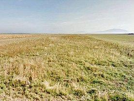 Teren agricol de vânzare în Harman