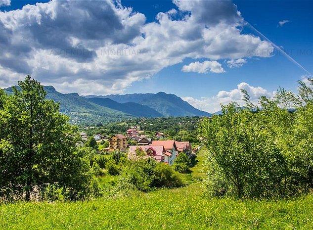 Domeniu pe 5.000 mp teren, in adorata pozitionare, Bran - Sohodol - imaginea 1