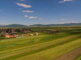 Vânzare ferma în Brasov, Sud-Est
