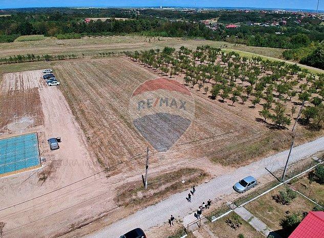 Teren Parcelabil in Albota, zona Primarie - imaginea 1