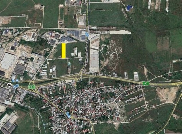 Theodor Pallady - Drumul intre Tarlale 5.000mp dubla deschidere - imaginea 1