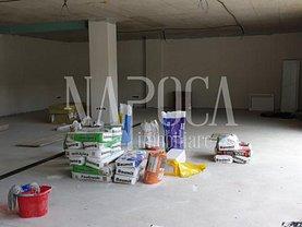 Vânzare spaţiu comercial în Cluj-Napoca, Europa