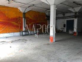 Închiriere spaţiu industrial în Cluj-Napoca, Iris