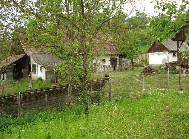 casa buna in Caluseri, 5 camere, 8800 mp teren - imaginea 1
