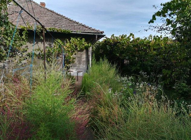 casa in zona Budiului, 3 cam, 501 mp teren,singur - imaginea 1