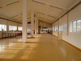 Vânzare spaţiu industrial în Vladesti