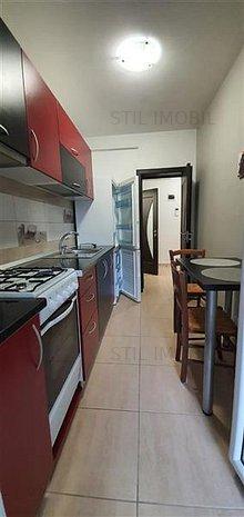 Apartament 1 camera Bucium in spate la Bellaria 240 euro - imaginea 1