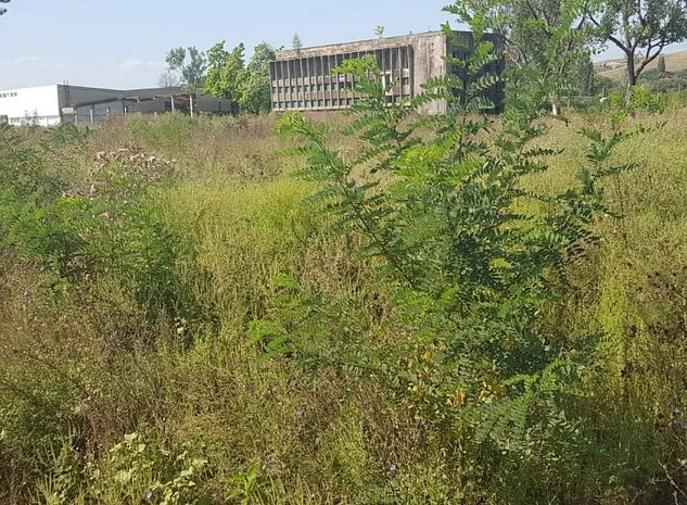 Vand hala si teren zona industriala - imaginea 1