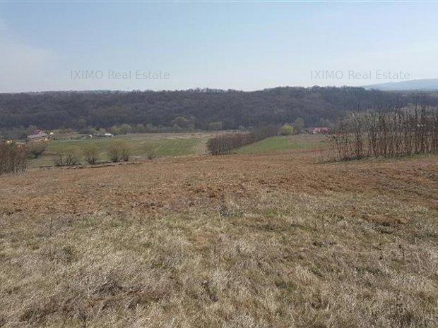 3,5 ha plan arabil COMPACT Traian - imaginea 1
