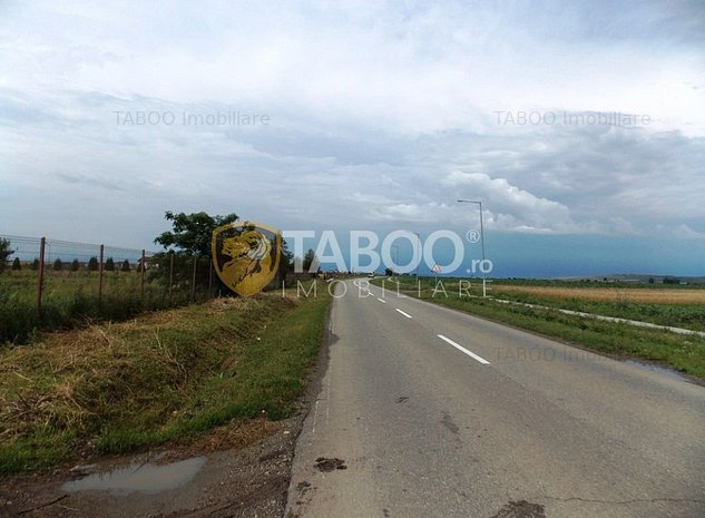 Teren extravilan de vanzare 10000 mp in Sura Mica judetul Sibiu - imaginea 1