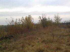 Licitaţie teren agricol, în Balta Doamnei