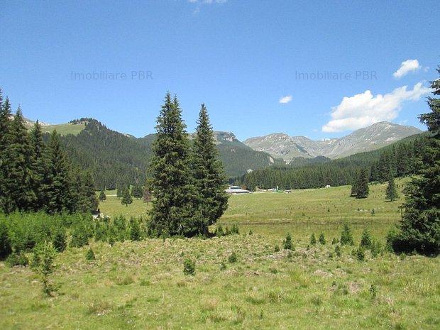 Teren 6640 mp in Moroeni, Dambovita  - imaginea 2