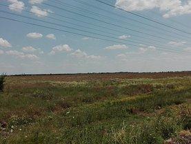 Licitaţie teren agricol, în Otopeni, zona Odai